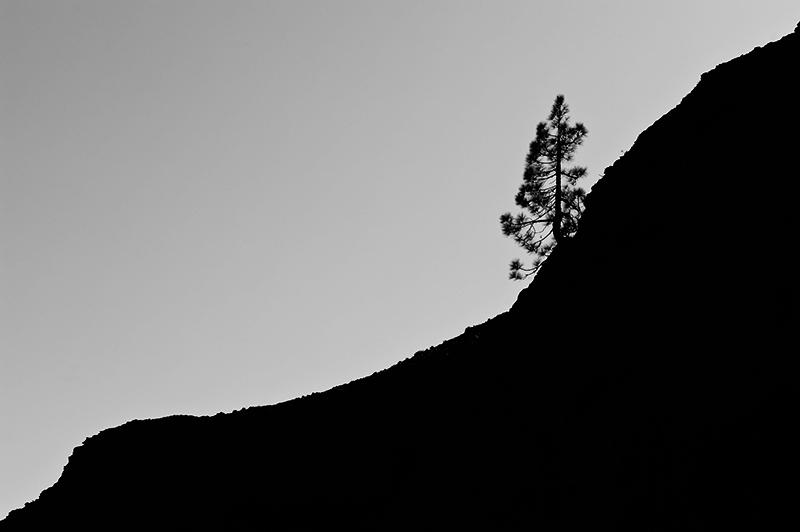 Imagen del fotógrafo Damián Borges - 10